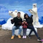 北極熊 北海道